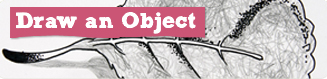 Draw an Object