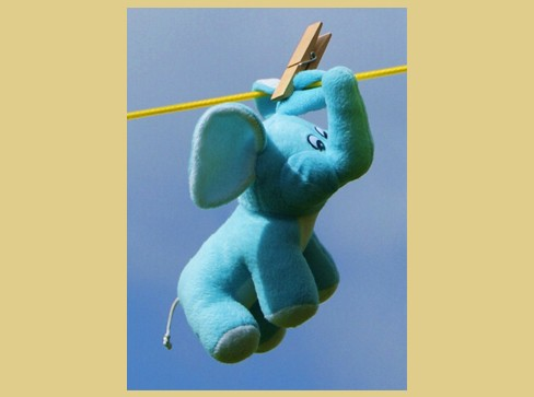 Don't Forget (Flying Elephant)